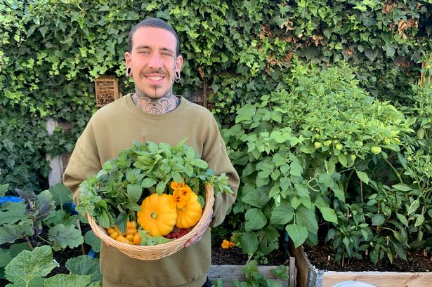 Lleva casi 9 meses sin salir a comprar frutas y verduras. Todo lo cosecha  en su jardín -